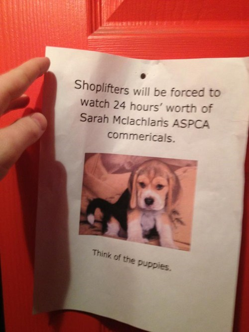 shoplifters depressing Sarah McLachlan too harsh