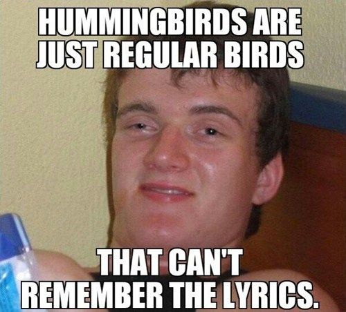 Music,birds,really high guy,hummingbirds,10 guy
