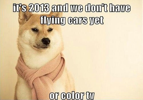 dogs flying cars athetits - 7138544640