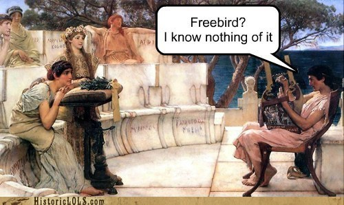 freebird,performances,musicians