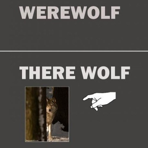 there werewolf why-are-you-talking-like-that