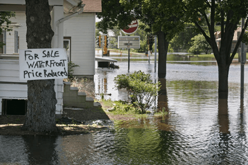 sign optimism flood