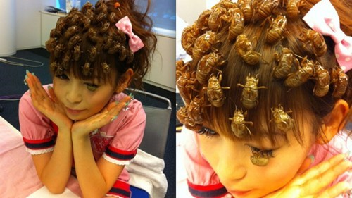 bugs,hairdos,only in japan