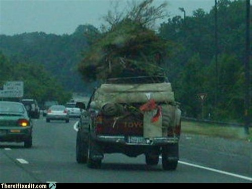 oversize loads,pickup truck,highway,tree branches
