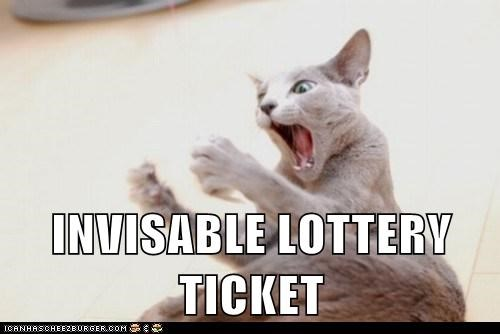 invisible reaction Cats - 7140853248