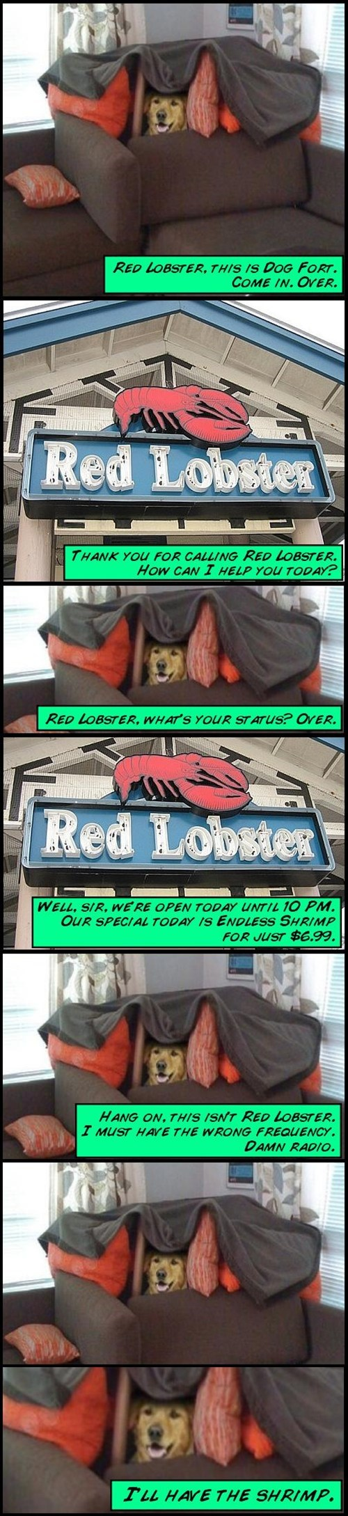 Games - RED LOBSTER, THIS IS DOG FORT. COME IN.OVER. Red Lobstes THANK YOU FOR CALLING RED LOBSTER. How CAN 1T HELP YOU TODAY? RED LOBSTER, WHAT'S YOUR STATUS? OVER. Red Lobster WELL, SIR, WERE OPEN TODAY UNTIL 10 PM. OUR SPECIAL TODAY IS ENDLESS SHRIMP FOR JUST $6.99. HANG ON, THIS ISNT RED LOBSTER. I MUST HAVE THE WRONG FREQUENCY. DAMN RADIO. TLL HAVE THE SHRIMP.
