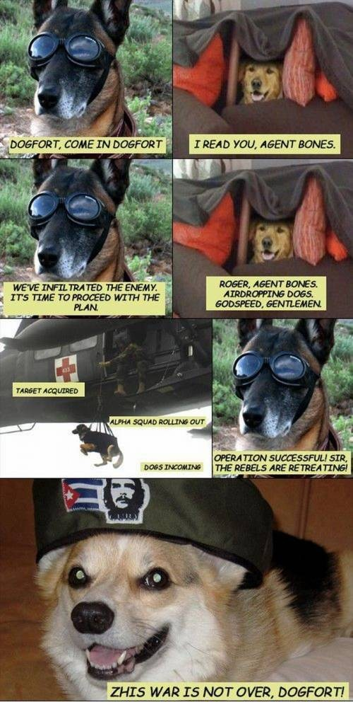 Canidae - I READ YOU, AGENT BONES. DOGFORT, COME IN DOGFORT ROGER, AGENT BONES AIRDROPPING DOGS. GODSPEED, GENTLEMEN WE'VE INFILTRATED THE ENEMY ITS TIME TO PROCEED WITH THE PLAN TARGET ACQUIRED ALPHA SQUAD ROLLING OUT OPERATION SUCCESSFULI SIR THE REBELS ARE RETREATING! DOGS INCOMING ZHIS WAR IS NOT OVER, DOGFORT!