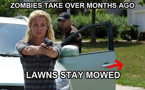 laurie holden,lawns,zombie,Jon Bernthal,shane walsh,andrea,The Walking Dead