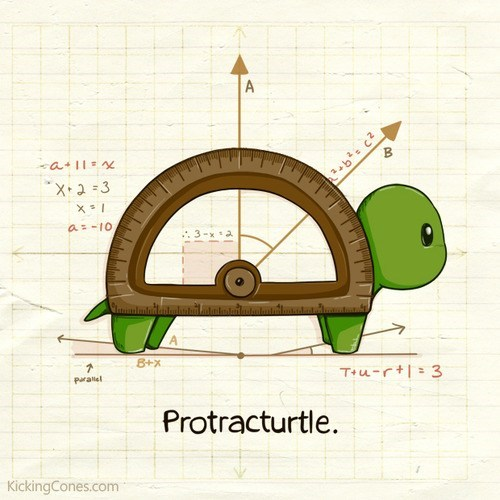 art,protractor,turtle