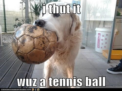 i thut it wuz a tennis ball