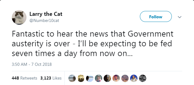 tweeting downing-st cat tweets UK funny tweets Cats - 7142149