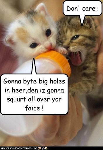 Gonna byte big holes in heer,den iz gonna squurt all over yor faice ! Don' care !