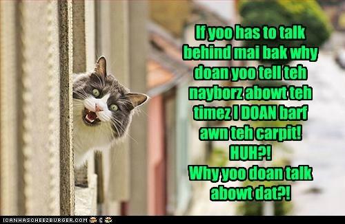 outside Cats gossip - 7143267840