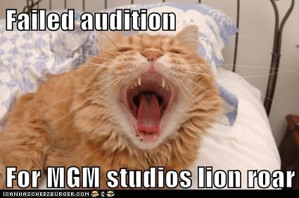 rawr,lion,audition