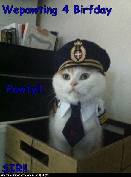 Wepawting 4 Birfday  Pawty!!, SIR!!