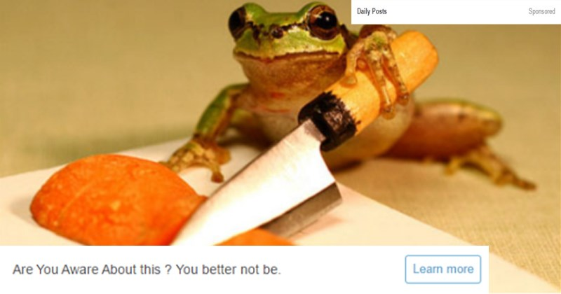 cover image of a frog holding a knife