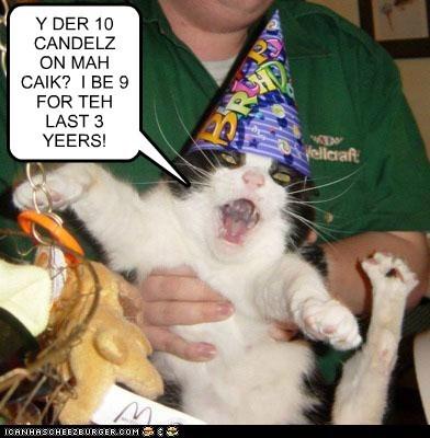 Cheezburger Image 7146353920