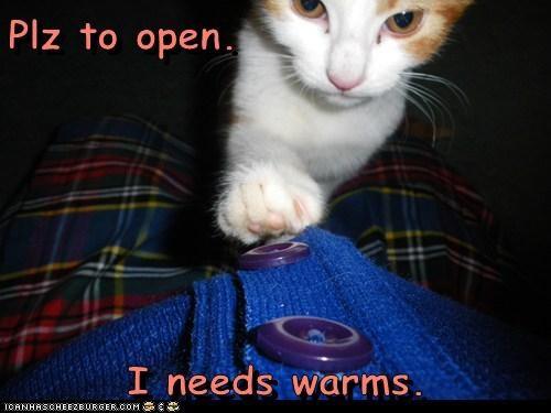cuddles warm - 7146833152