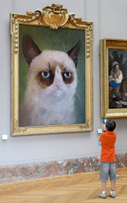 Grumpy Cat,tardar sauce,art,gallery