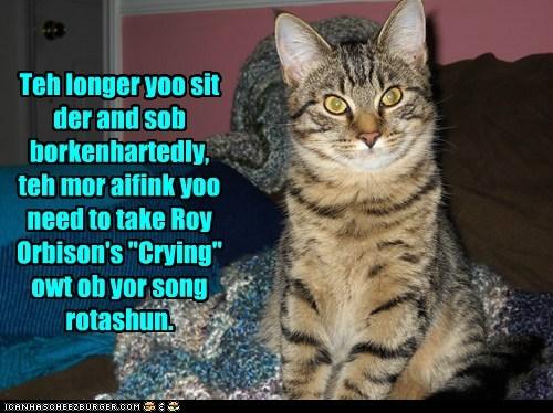 "Teh longer yoo sit der and sob borkenhartedly, teh mor aifink yoo need to take Roy Orbison's ""Crying"" owt ob yor song rotashun."