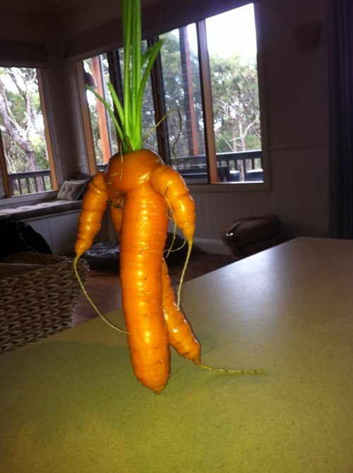 man carrot walking funny - 7148284672