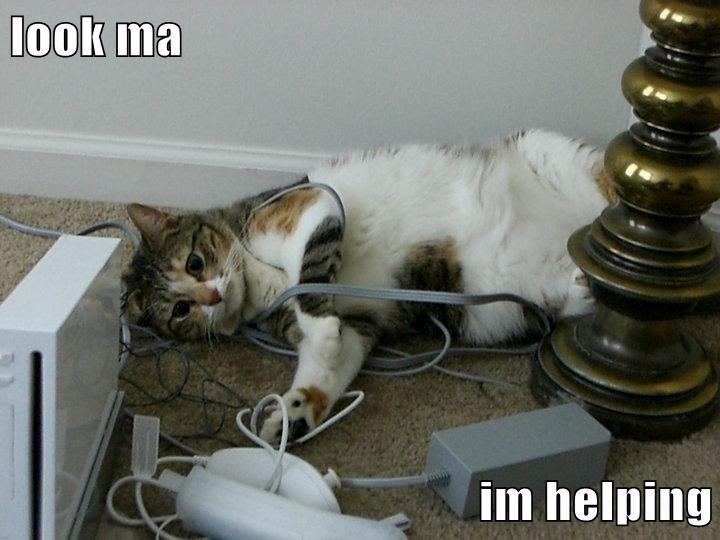 tangled helpful - 7148286464