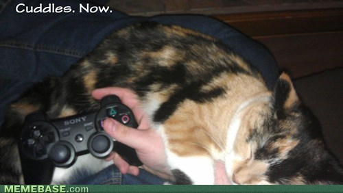 cuddle,pause,video games