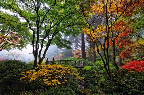 The Colorful Japanese Gardens in Portland, Oregon
