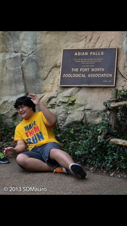 whoops,zoo,literalism