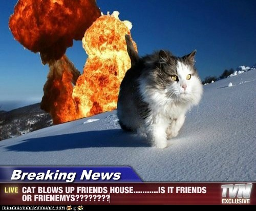 Breaking News - CAT BLOWS UP FRIENDS HOUSE...........IS IT FRIENDS OR FRIENEMYS????????