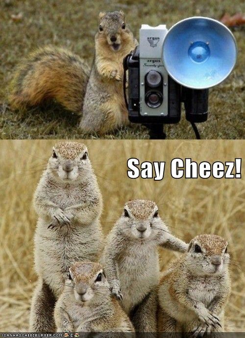 squirrels family portrait say cheese