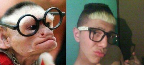 who wore it better,monkeys,glasses