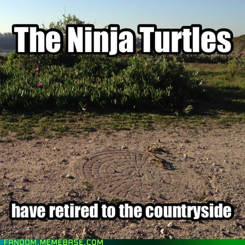 TMNT,cartoons,retirement