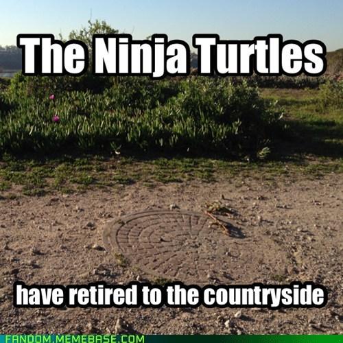 TMNT cartoons retirement - 7150384384