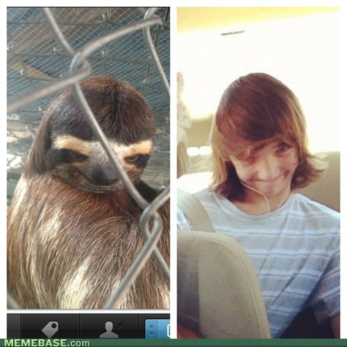 totally looks like,sloths