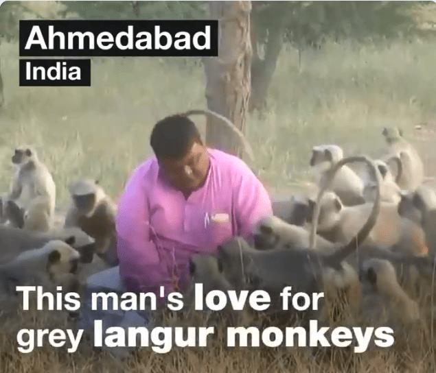 random act of kindness people rewards kindness animals - 7150597