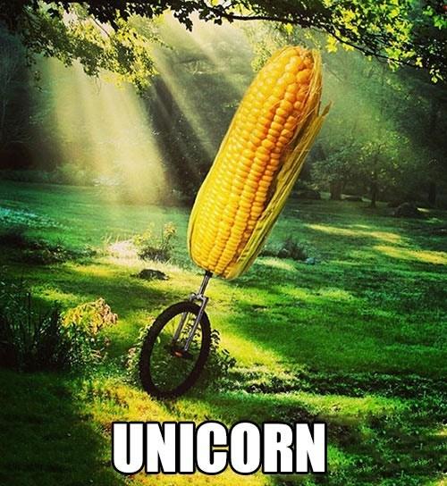 unicorn corn unicycle - 7150676992