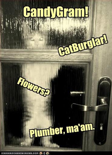 Cheezburger Image 7150718976