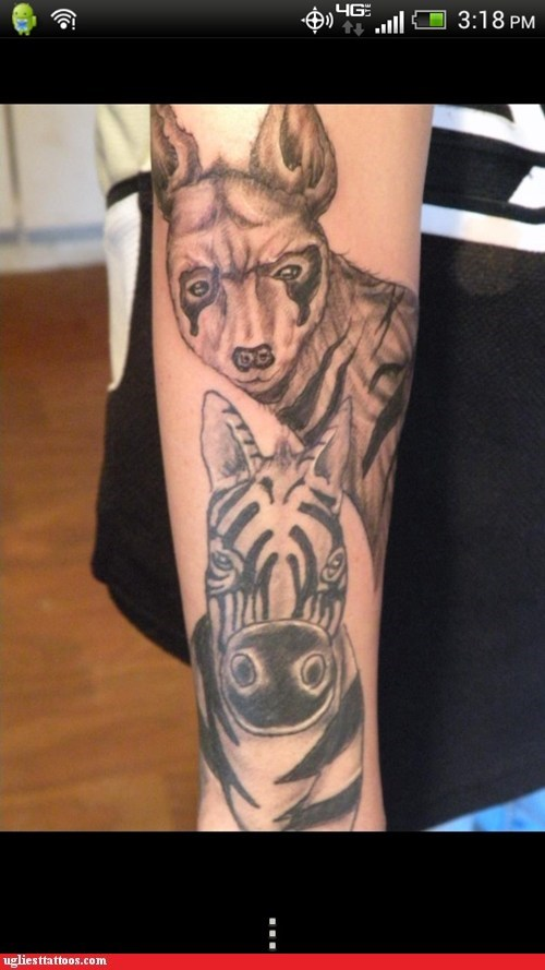 arm tattoos,zebras,animals