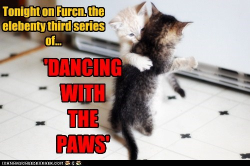 Tonight on Furcn. the elebenty third series of... 'DANCING WITH THE PAWS'
