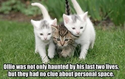 ghosts personal space nine lives - 7153084160
