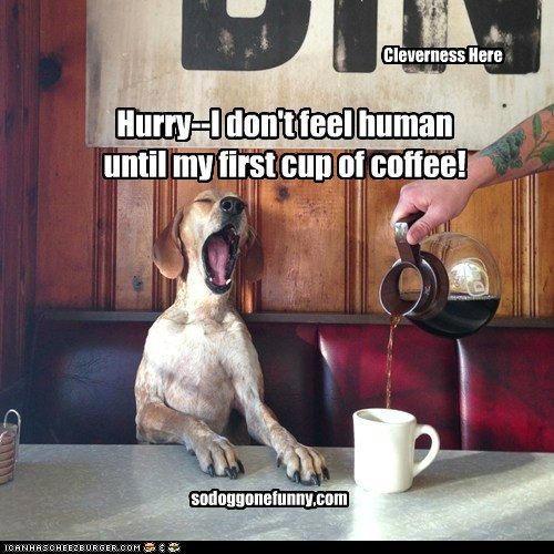 Hurry--I don't feel human until my first cup of coffee! Cleverness Here sodoggonefunny,com