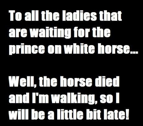 white horse waiting prince - 7153218816