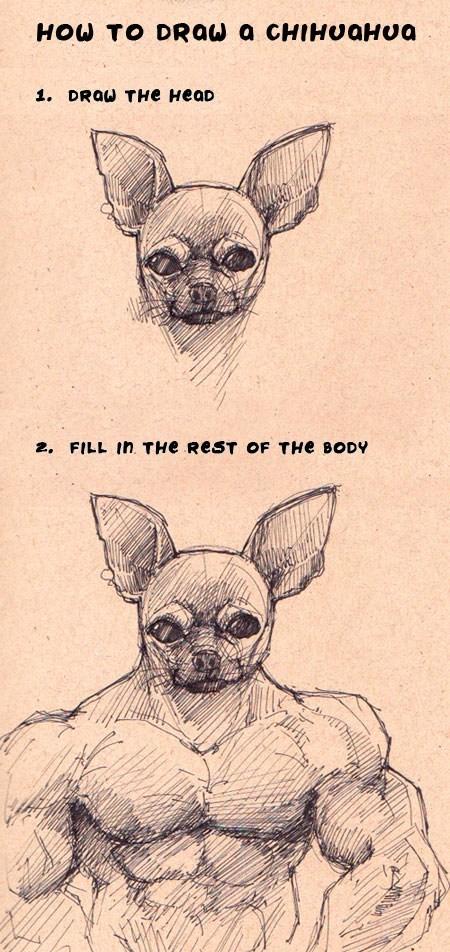 drawing chihuahua - 7153294336