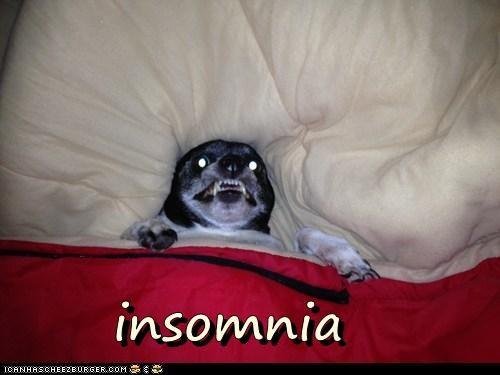 insomnia - 7153505280