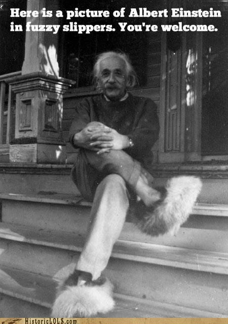 fuzzy slippers albert einstein - 7154418176