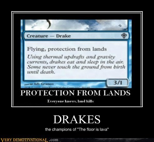 game,floor is lava,drakes
