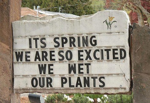 plants,spring,signs,monday thru friday,g rated