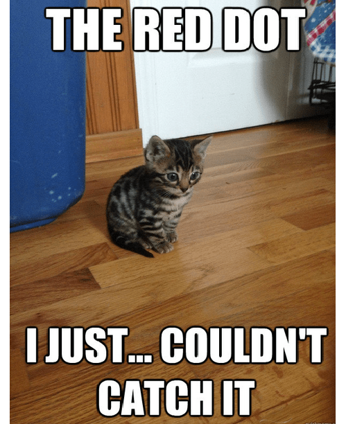 red dot,flashback