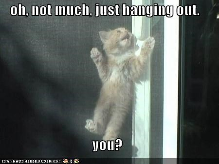 oh, not much, just hanging out.  you?